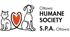 Ottawa Humane Society